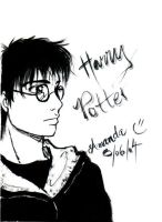 harry ink by amandioka