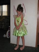 Tinker Bell Stock 2 by MissyStock