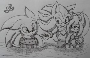 Shadow Sonic and Amy are taught to swim by WolfsRainrus