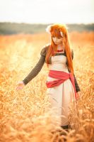 Horo in the Field 2 by andrewhitc