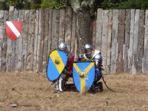 Knights protecting themselves from arrows by A1Z2E3R