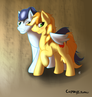 Two ponies and a wing by Capseys