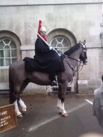Household Cavalry Guard by kay115