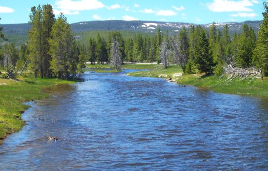 Yellowstone Water by LadyArdeth