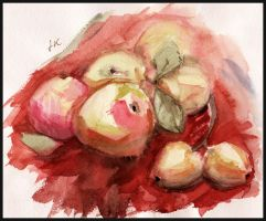 Apples by MirraGray