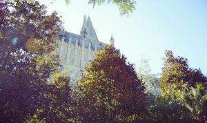 Hogwarts in the Tree's by LoveJace922