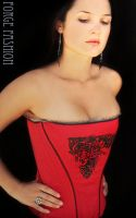 Screenprinted Knight Corset by Trinitynavar