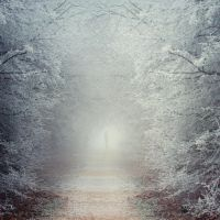 I'm Nothing by ildiko-neer