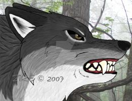 -dont mess up with me-headshot by Zire9