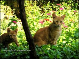 868 by evy-and-cats