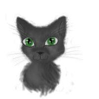 Realistic Kitteh by Toxic-Lullabies