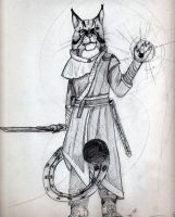 Khajiit by FelldohTheSquirrel
