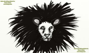 lion head BW by theGman0