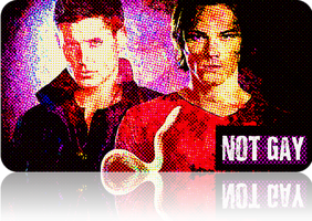 Supernatural - Not Gay by chasesocal