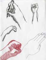Hands of a study by Poorartman