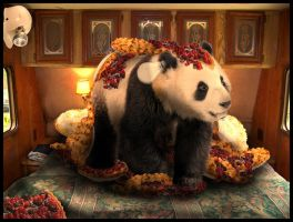 THE GREAT PANDA PIE DISASTER by SCT-GRAPHICS
