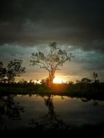 Sunset Reflection. by Gas-Hed