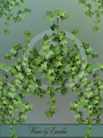 Vines - png-files by Euselia