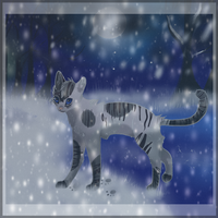 All cats are grey in the night by Snowstorm-cat