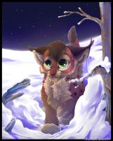 Winter night journey by SirKittenpaws