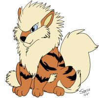 Arcanine by ty-foreverruling