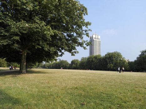 The park, the tree and the building by Incopa