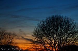 Sunset by aRT-iS-eXTaSY