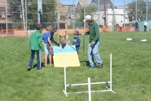 2014 Dog Festival, Try It Dog Obstacles 5 by Miss-Tbones