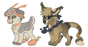 rare misty pups batch by Chargay