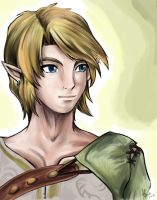 -Twilight Princess- Link by AlineMendes