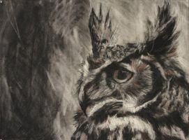 Horned Owl by Alexander-Landerman