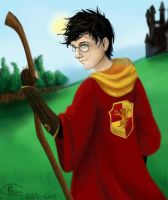 Gryffindor by MonsieArts