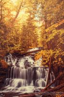 Golden Waterfalls by JessicaDobbs