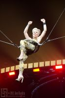 P!nk: The Truth About Love Tour #10 by JonShotFirst