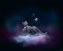 cat at night sky by Ooyamaneko