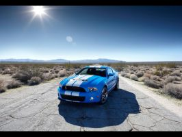 2010 Ford Shelby GT500 by matsw007