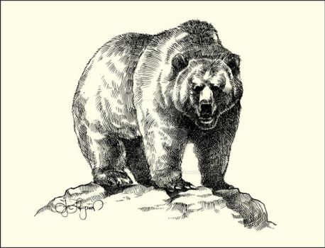 Grizzly by Lui-freelancer