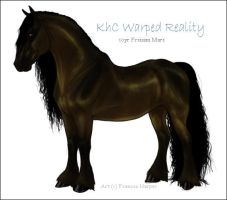 KhC Warped Reality by sealle