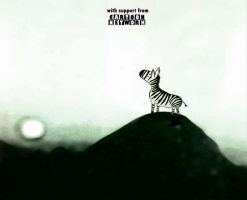 ZEBRAA by abdipour