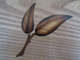 Olivewood and Brazilian Walnut inlay by DMSscroller