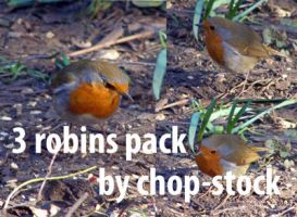 Robin Set 1 by chop-stock