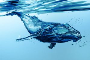 4/365 - whale by h1fey