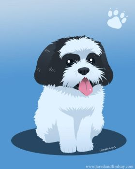 Charly the Shih Tzu by peachfuzzmargins