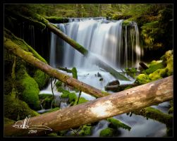 Falls off WA hwy 90 by DerekMgrfx