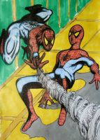Pop-art Spider-man with webbing by DustyPaintbrush