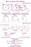How to draw Cats by Stock-Heil