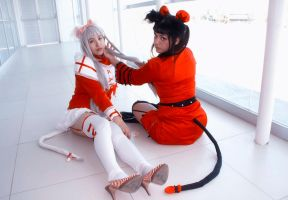 Neko Sisters! by RoxiiCosplay