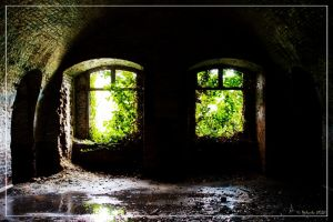 Green vault by 0-Photocyte
