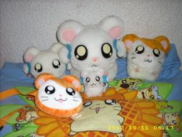 Hamtaro Plush Collection 2012 by kratosisy