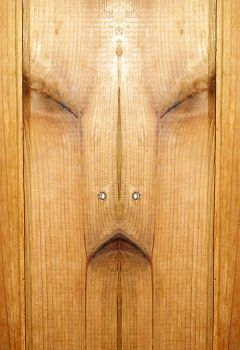 Face in the panelling by scott-451